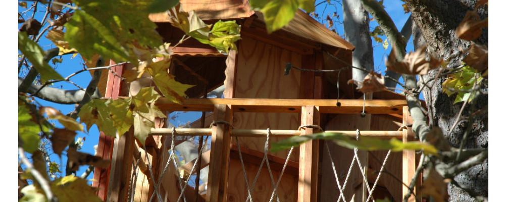 Treehouse1000x400